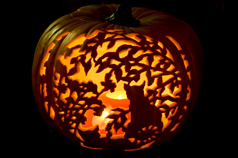 cat-pumpkin-carving_026